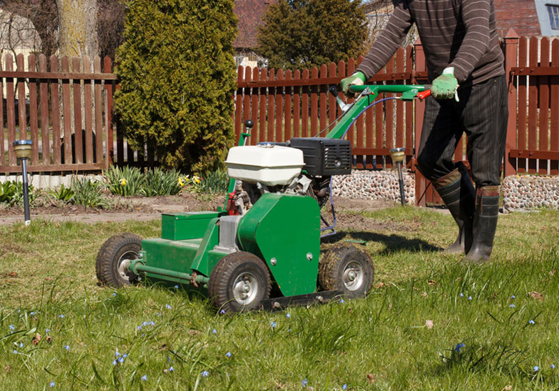 Should I Aerate My Lawn This Spring In Utah